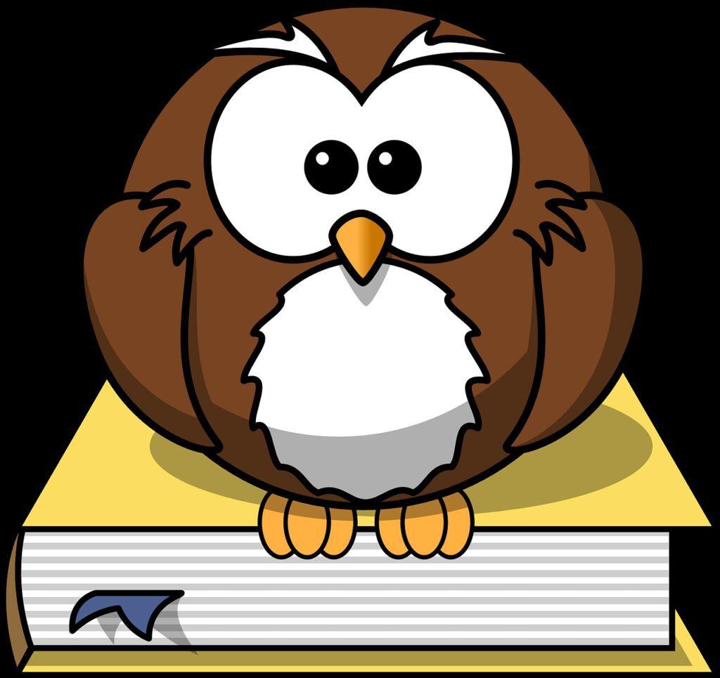 owl, book, animal